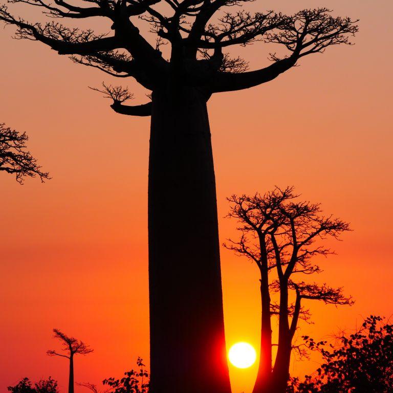 Madagascar Autrement